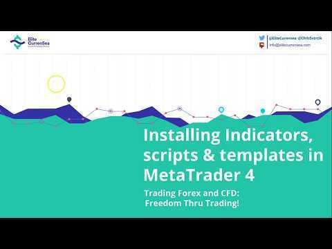 video-tutorial-installing-indicators-scripts-and-templates-to-metatrader4-mt42021.jpg