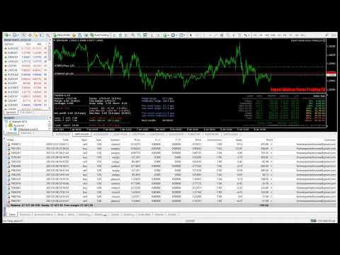 video-tutorial-expert-advisor-forex-live-trading2021.jpg